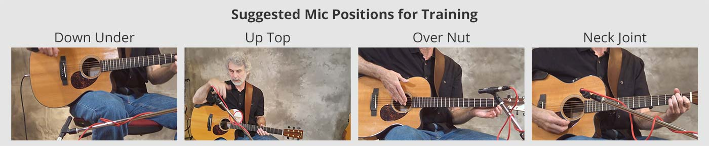 ToneDexter Training Mic Positions